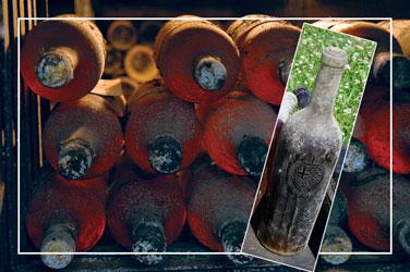 vina kraljeve vinarije oplenac