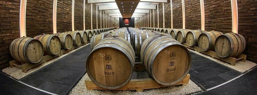Vina vinarije Temet